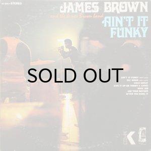 画像1: JAMES BROWN / AIN'T IT FUNKY NOW (LP) (1)