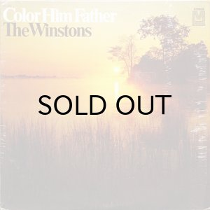 画像1: THE WINSTONS / COLOR HIM FATHER (LP) (1)