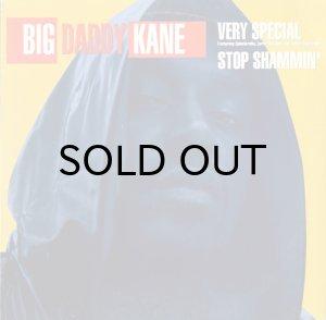 画像1: BIG DADDY KANE / VERY SPECIAL b/w STOP SHAMMIN' (1)