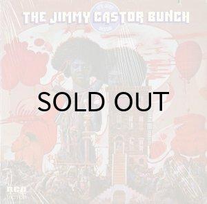 画像1: THE JIMMY CASTOR BUNCH / IT'S JUST BEGUN (LP) (1)